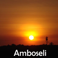 Amboseli_X-Mass_Offer